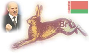 Валютный кризис в Республике Беларусь. Девальвация белорусского рубля. 2011 год